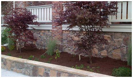 landscaping photos in denver